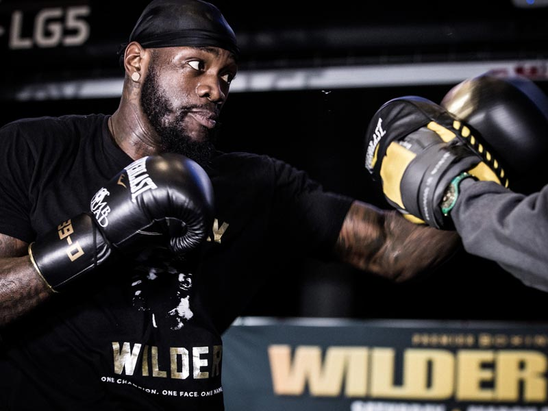Wilder-Workout